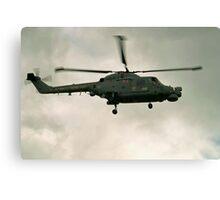 Navy Lynx  Canvas Print