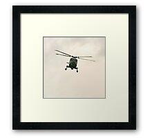Navy Lynx  Framed Print