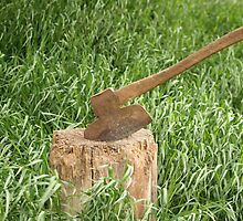Antique Broad Axe in a Stump of Wood by rhamm