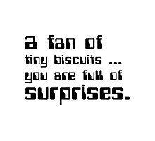 a fan of tiny biscuits Photographic Print