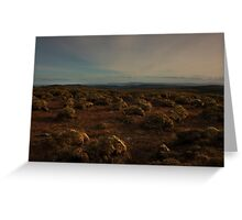 Weird Bog Landscape Greeting Card