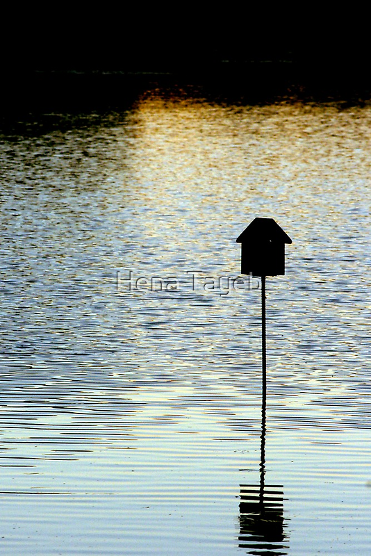 House on the Lake by Hena Tayeb