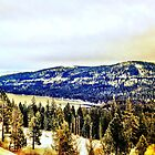Tahoe Baby by ChrisGPrints