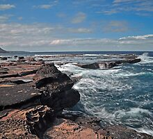 The Rocky Shore by Terry Everson