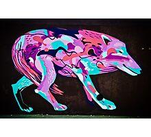 Psychedelic Graffiti art Wolf Photographic Print