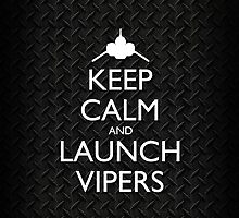 Keep Calm and Launch Vipers (Metal Decking) by olmosperfect
