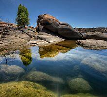 Submerged by Bob Larson