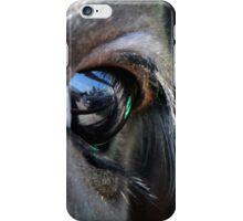 Symbol of Freedom iPhone Case/Skin