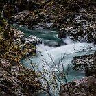 Elk River, OR by Joe Blount