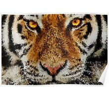 Animal Art - Tiger Poster