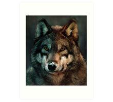 Animal Art - Wolf Art Print