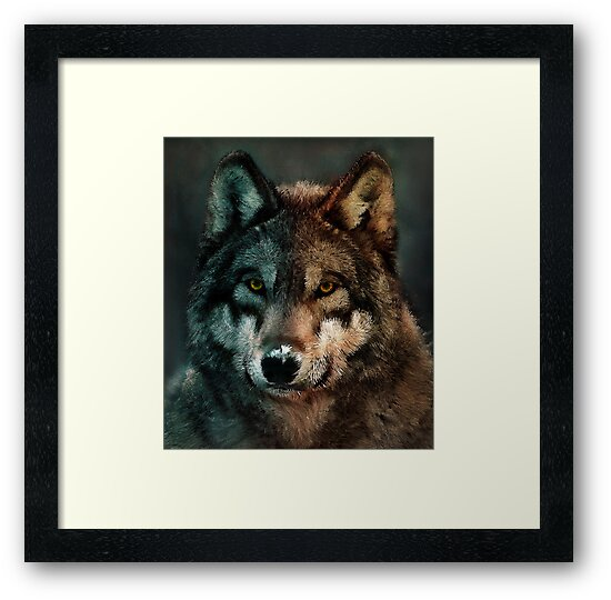 Animal Art - Wolf by Diego Tirigall