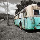 Nimbin Bus by Bami