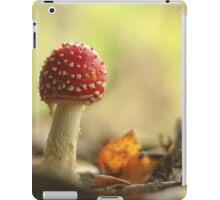 Fairy woodlands iPad Case/Skin