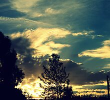 Sunset In The Suburb by Evita