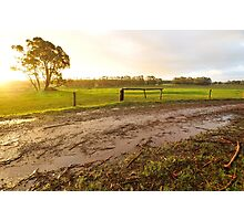 afternoon after rain Photographic Print