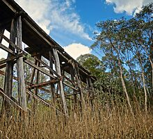 Old Trestle Rail Bridge by D-GaP