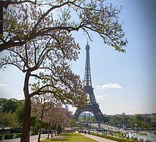 Spring In Paris by Adrian Alford Photography