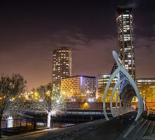 Spine Bridge At The Pier Head by Paul Madden