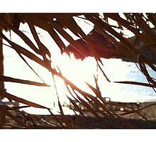 Sur la plage-Contre lumiere Photographic Print