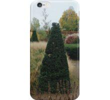 A winter garden iPhone Case/Skin
