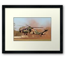 Tiger in the dust Framed Print
