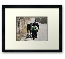 Herding Cows Down a Road in Cotacachi Framed Print