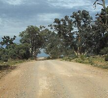 On the road from Arkaroola, South Australia by imaginethis