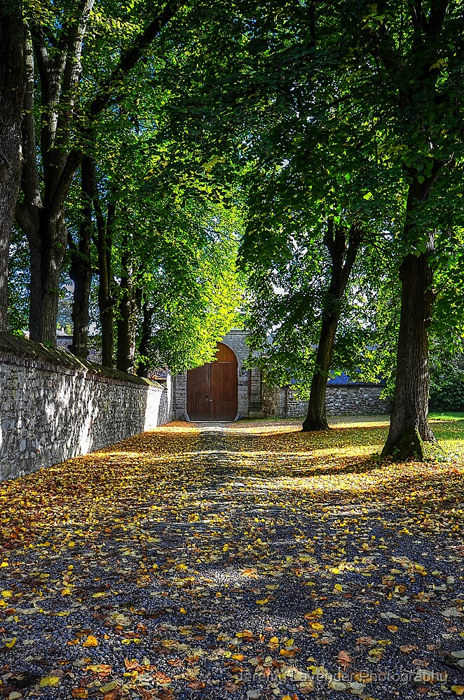 First signs of Autumn in Belgium - Sept 15, 2013 by Jeremy Lavender Photography