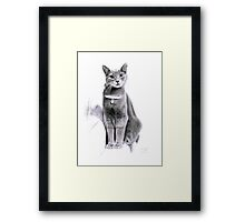 Sweet Angel Eyes Framed Print