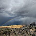 High Desert Monsoons by SB  Sullivan