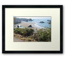 Overvew of Harris Beach Framed Print