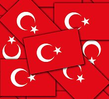 Smartphone Case - Flag of Turkey IX by Mark Podger