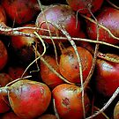 In Living Color: Beet Roots by paintingsheep