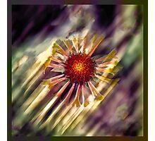 Radial Rays Photographic Print