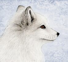 Polar Fox Profile by Mariya Olshevska