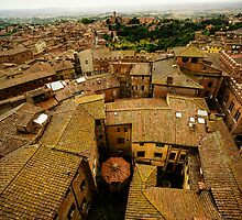 Siena roofs 2 by borjoz