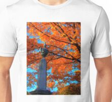 Mount Auburn: Into the Fire Unisex T-Shirt