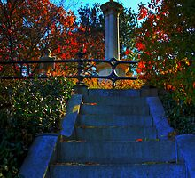 Mount Auburn: Stairs to Heaven by Kerri  Crau
