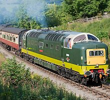 Deltic Power !!!!!!!!!!!!! by Kit347