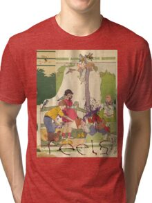 Animal Collective - Feels Tri-blend T-Shirt