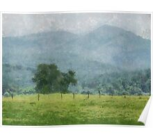 Pasture Trees Poster