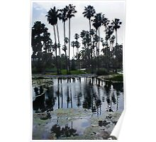 Palm Trees On Echo Park Lakes' Mini Island Poster