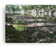 Troublesome Creek 11 Canvas Print