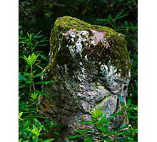 RHODI ROCK Photographic Print