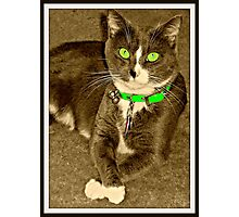 Miss Sassy Thank You Very Much Photographic Print