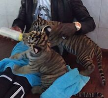Young Thug Feeding Tigers by robyolo