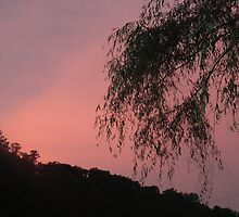 Sunset Sky  by jheflinphotos