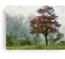 Tree In Lifting Fog Canvas Print