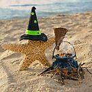 Halloween Starfish by Maria Dryfhout